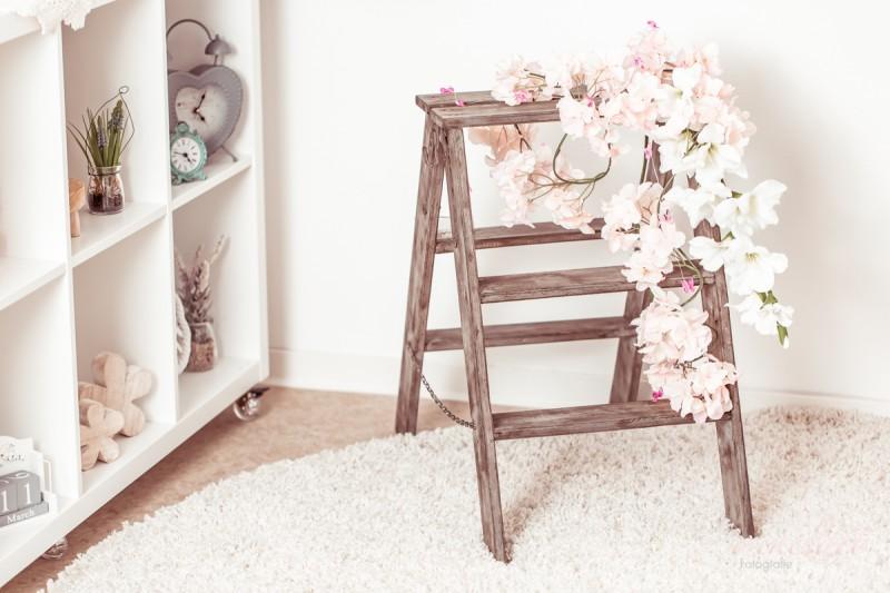 Studio rose web 19